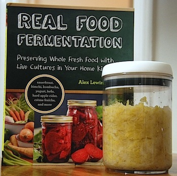 real_food_ferment_prod